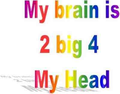 2big4myhead.jpg